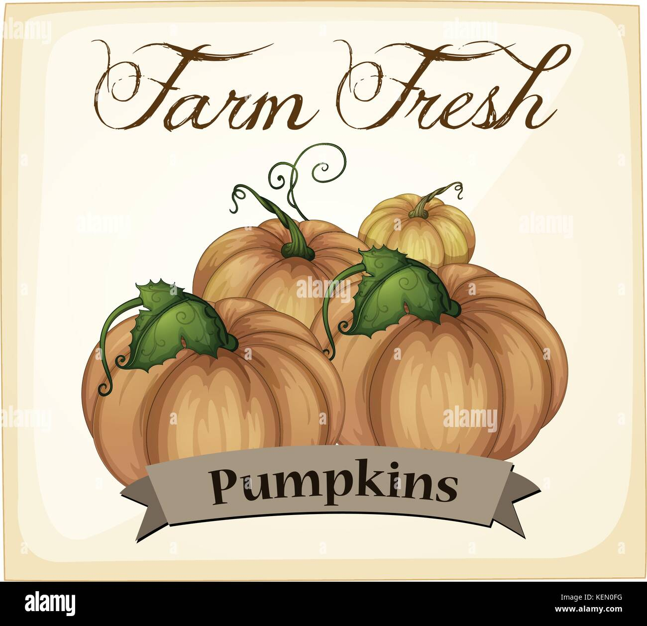 Pumpkins poster with text and label - Stock Vector