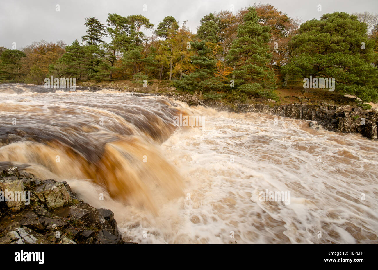 Low force Waterfall, Upper Teesdale, County Durham, UK. - Stock Image