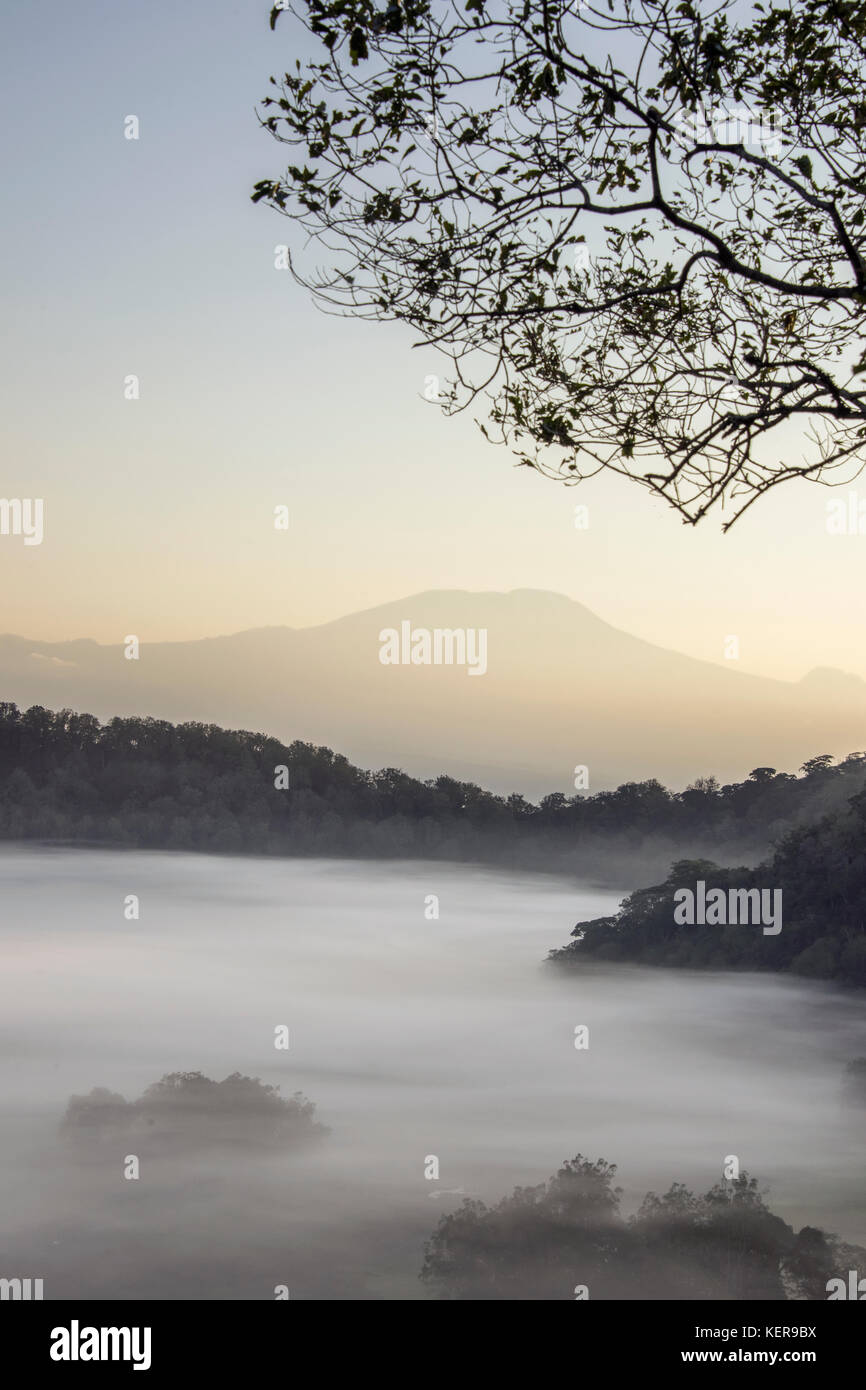 Mount Kilimanjaro and the mists of Ngurdoto Crater in the early morning sun, vertical, Arusha NP, Tanzania - Stock Image