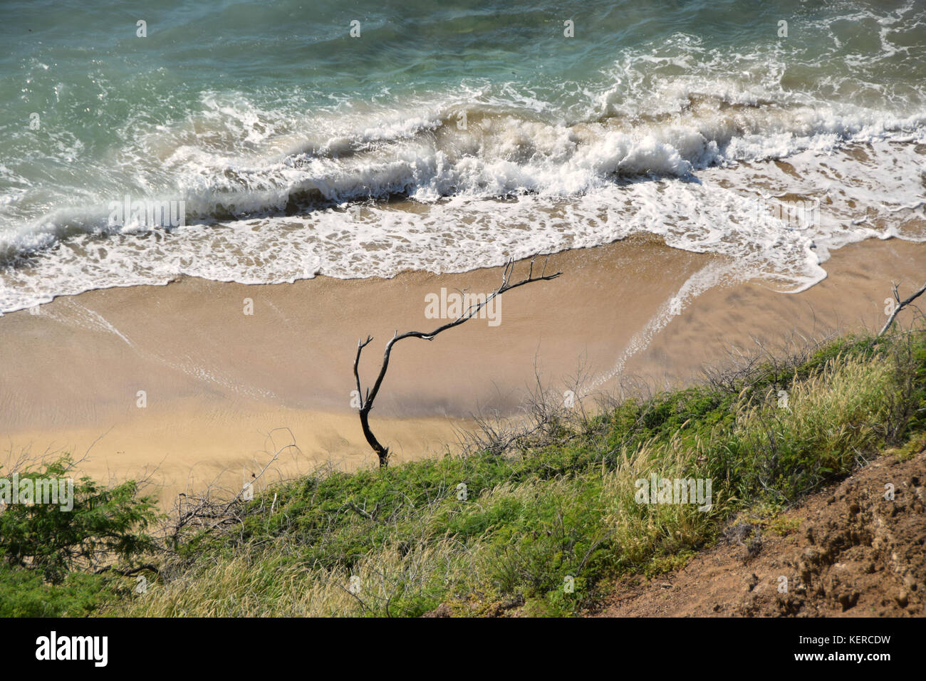 Beachfront overlook - Oahu, Hawaii - Stock Image