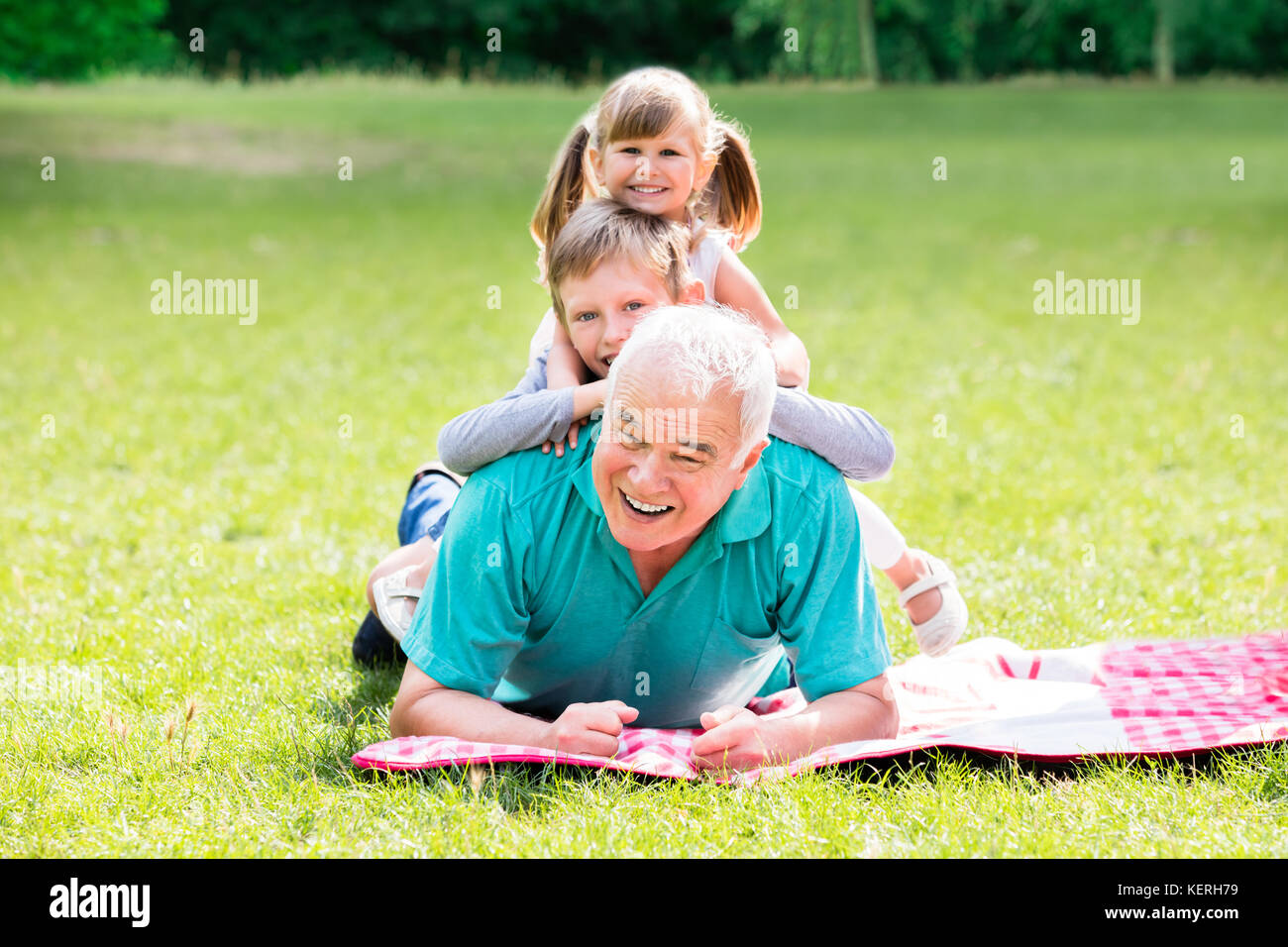 Portrait Of Happy Family Having Fun Lying On Green Grass Together In Park - Stock Image