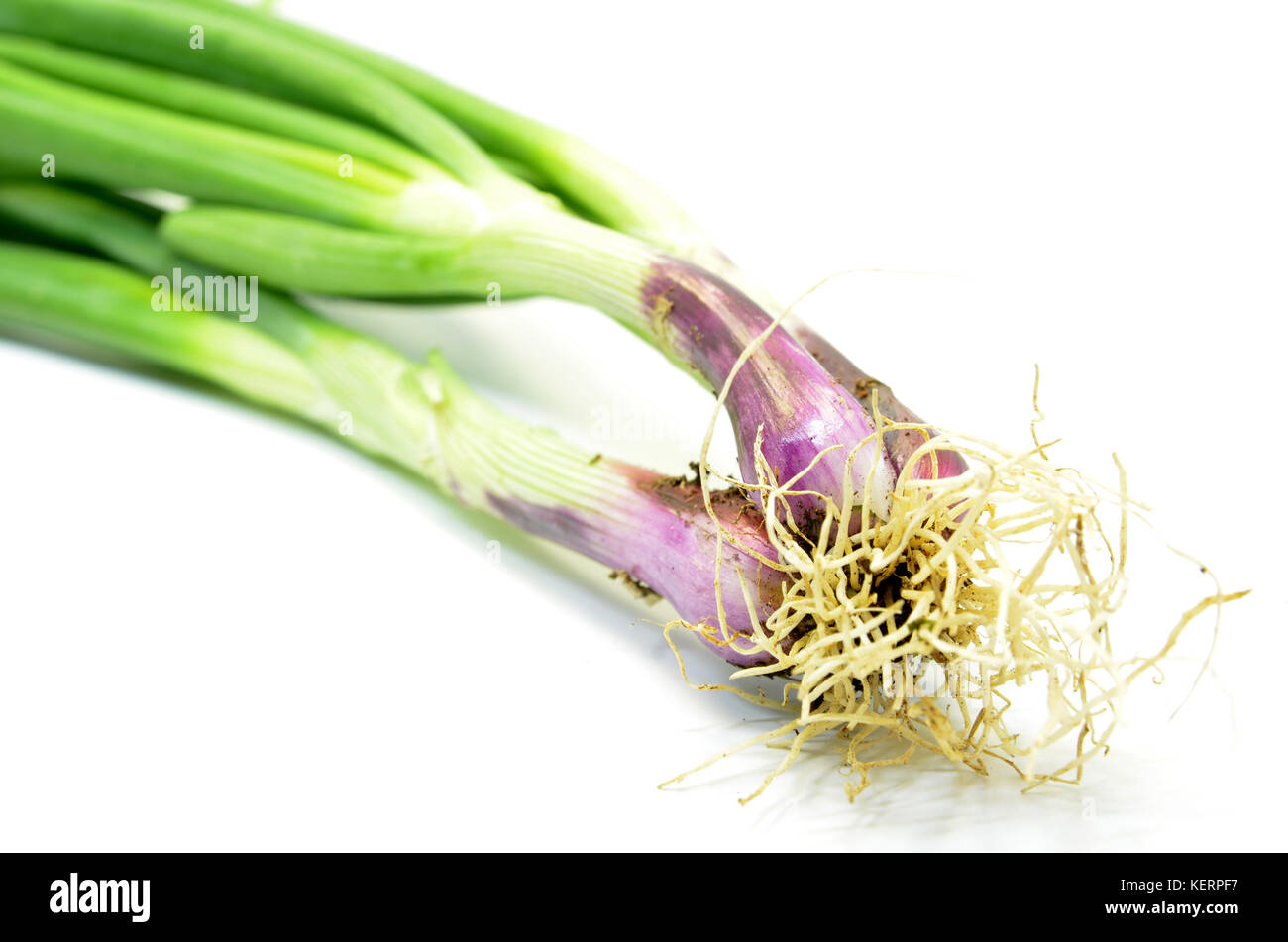 Fresh spring onions isolated over white background Stock Photo