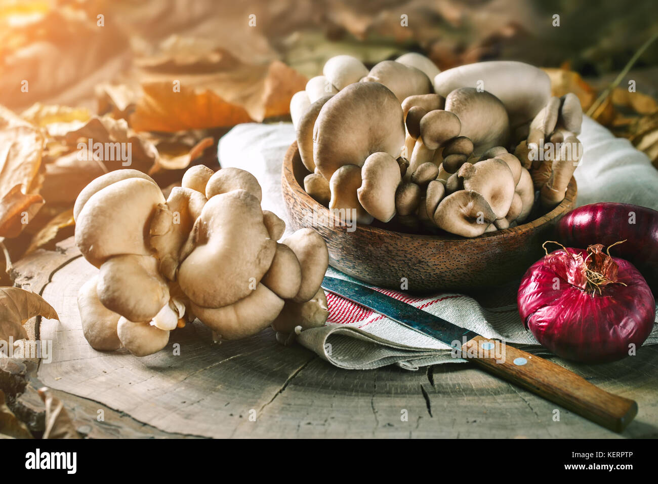 Raw mushrooms on the stump and autumn leaves. Autumn still-life. Selective focus. Autumn background. - Stock Image
