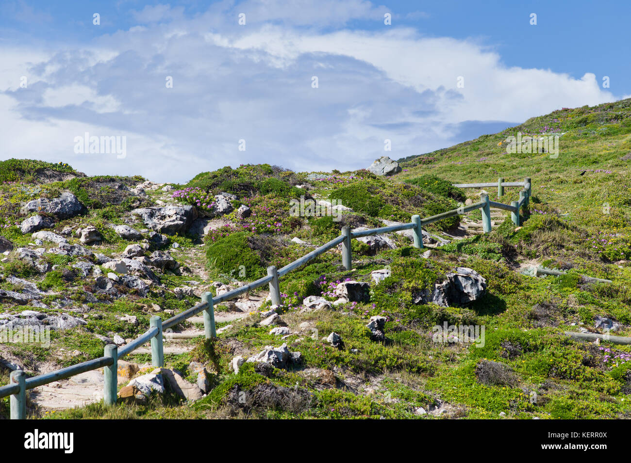 Cape Point is part of Table Mountain National Park and offers stunning views and an opportunity to hike or drive - Stock Image