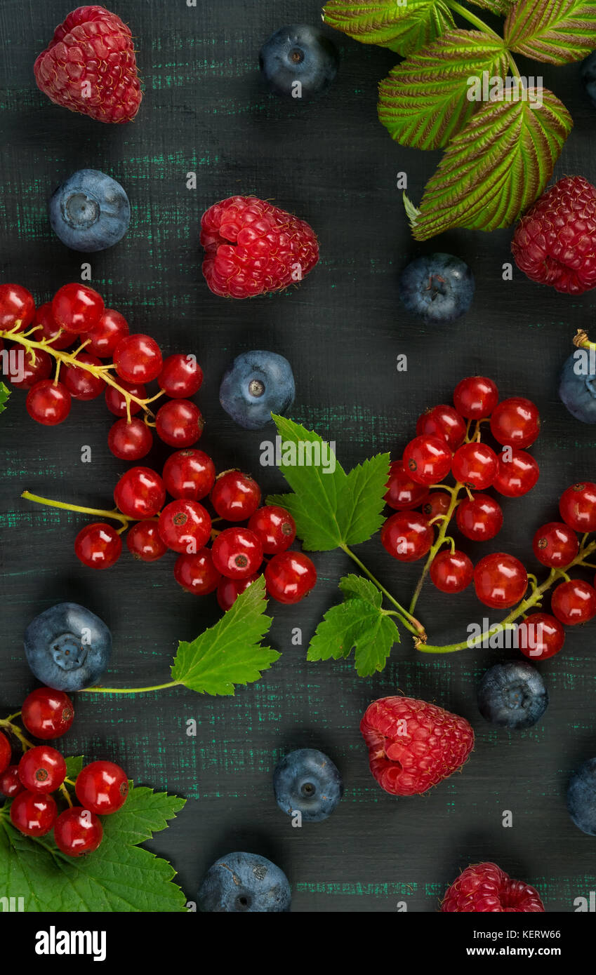 Beautiful summer berries on a dark background close-up - Stock Image