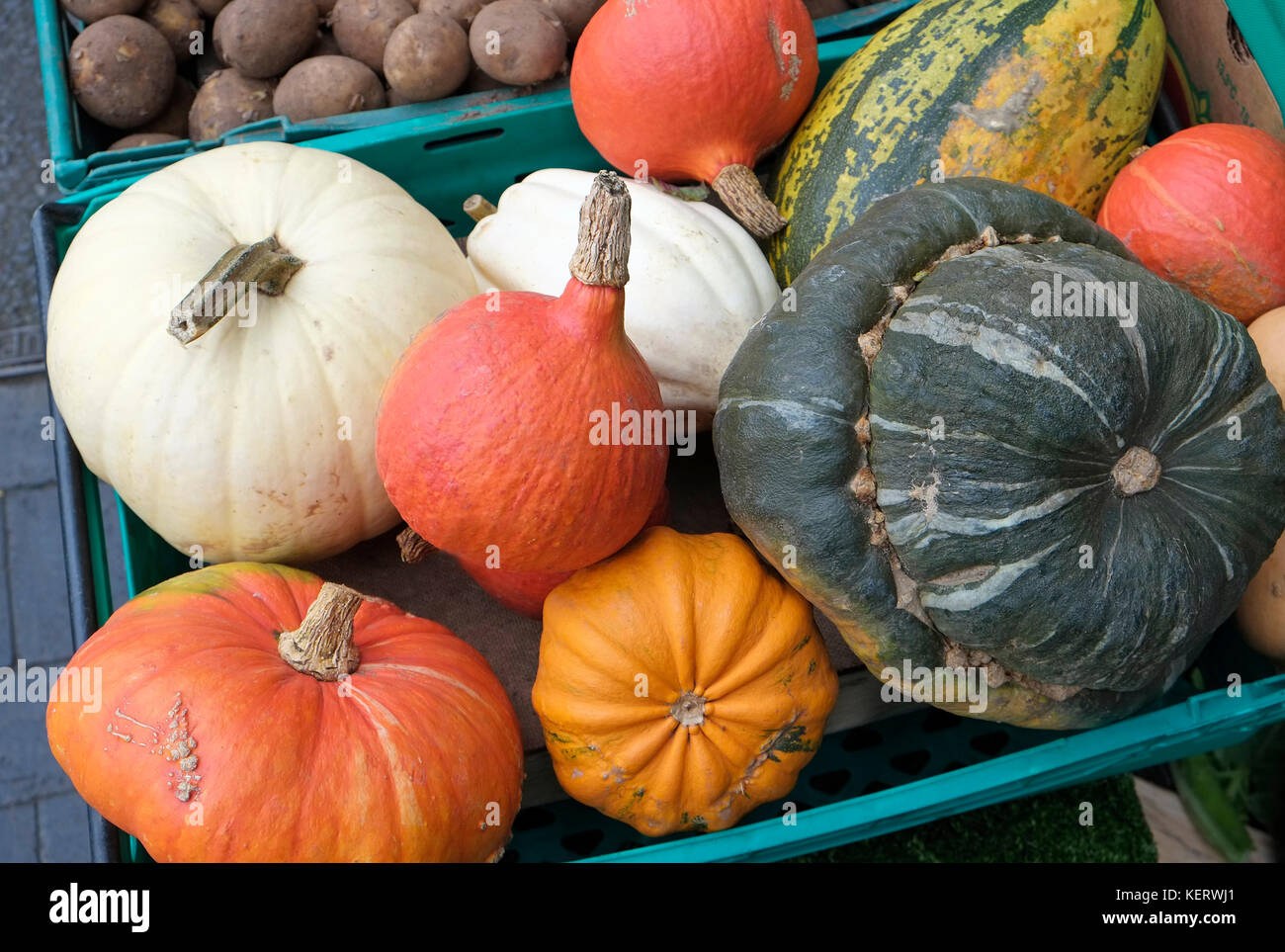 selection of gourds outside greengrocers store, fakenham, norfolk, england - Stock Image