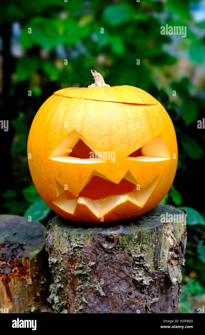 scary orange halloween pumpkin with angry looking face - Stock Image