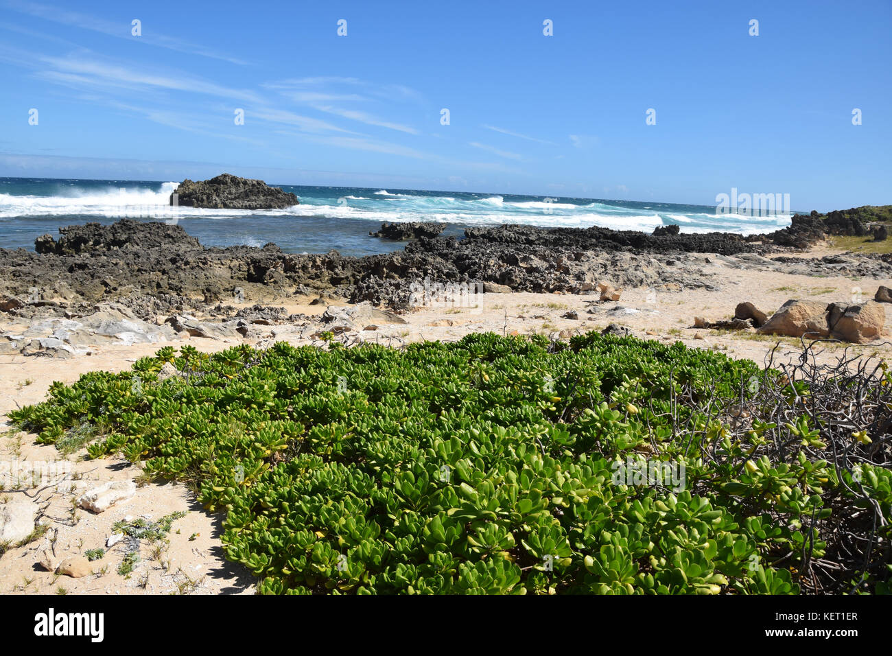 The surf rolls in over the Kahuku Shoreline on Oahu, Hawaii's North Shore - Stock Image