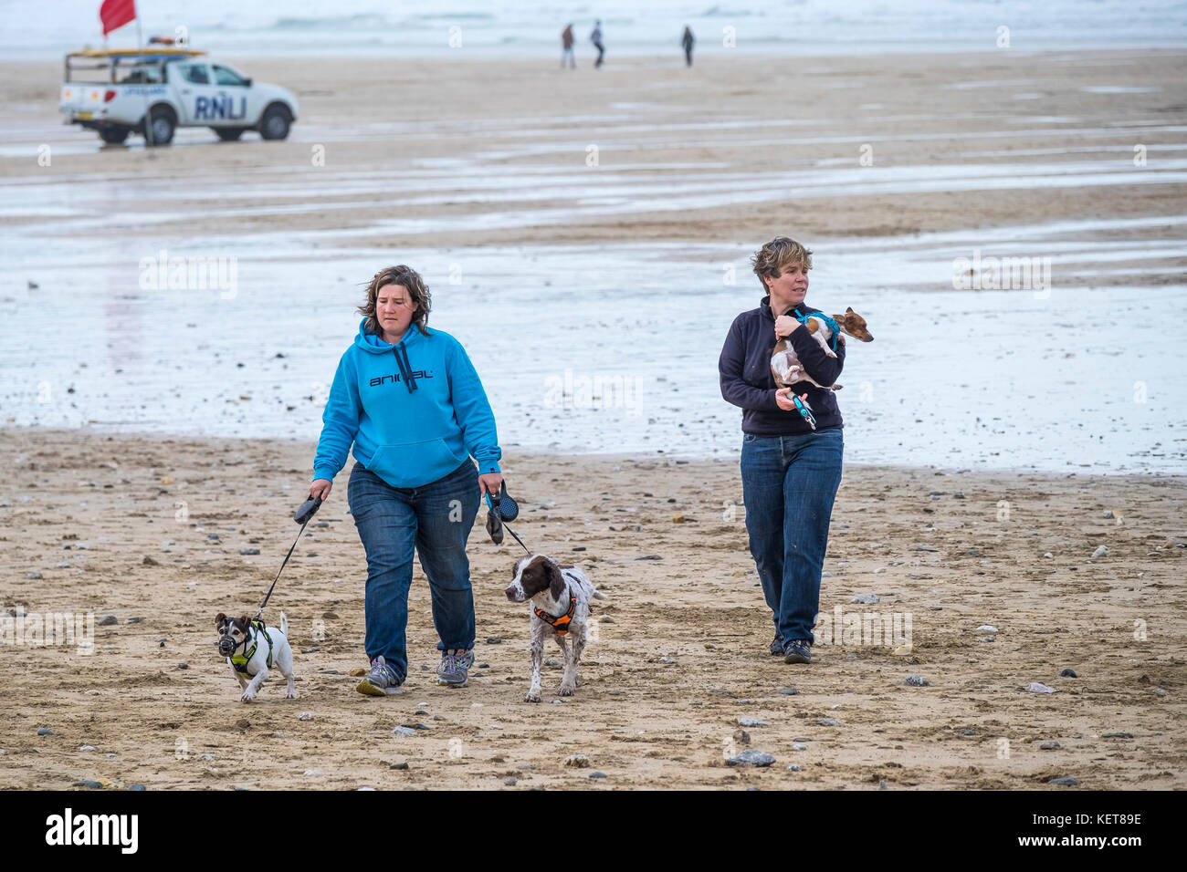 Dog walking - two women walking their small dogs on Fistral Beach Newquay. - Stock Image