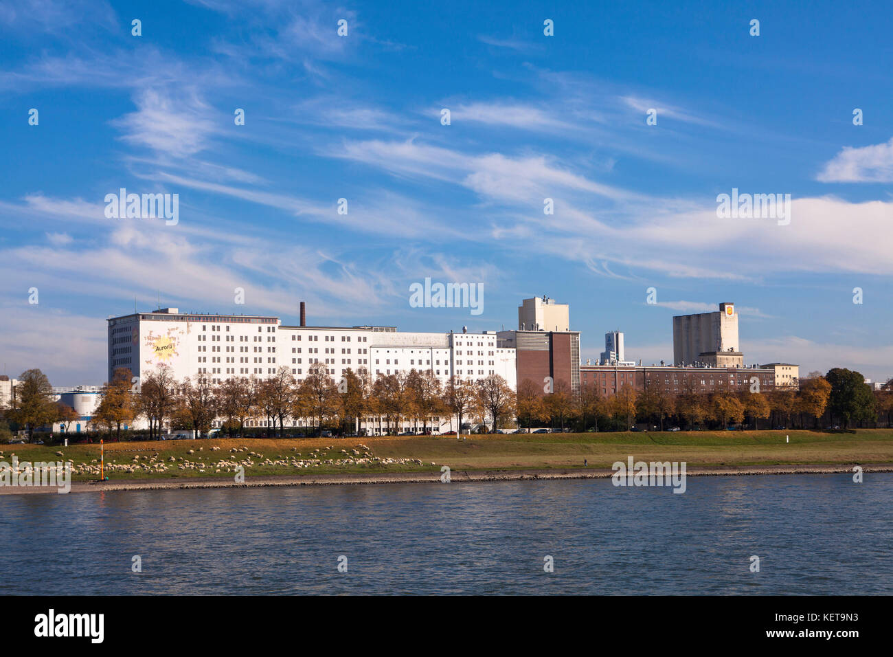 Germany, Cologne, view across the river Rhine to the Ell mill or Aurora mill at the Rhine harbor in the district - Stock Image