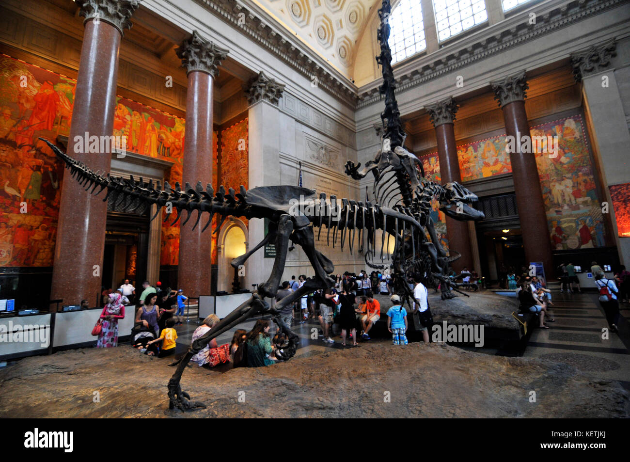 Dinosaur skeleton exhibits in the Main Hall of the American museum on natural history in Manhattan, New York. - Stock Image