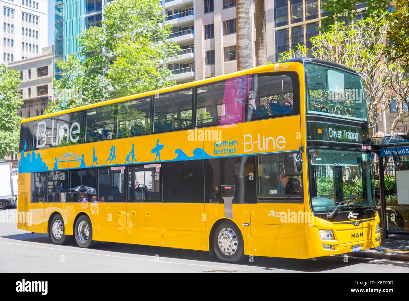new sydney yellow double decker bus for the b line bus service route