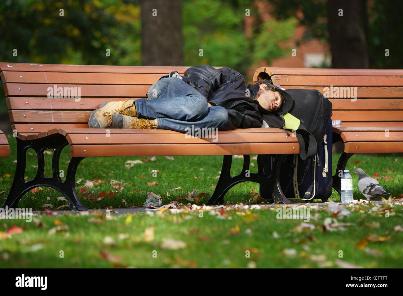 Montreal,Canada,22 October,2017.Homeless man sleeping on a park bench in Montreal's downtown core.Credit:Mario - Stock Image