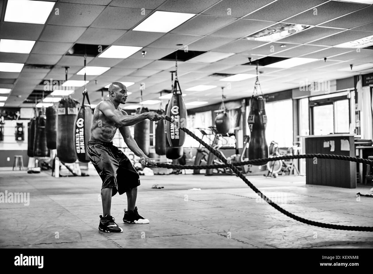 Shirtless athlete training in gym with battle ropes, Taunton, Massachusetts, USA - Stock Image