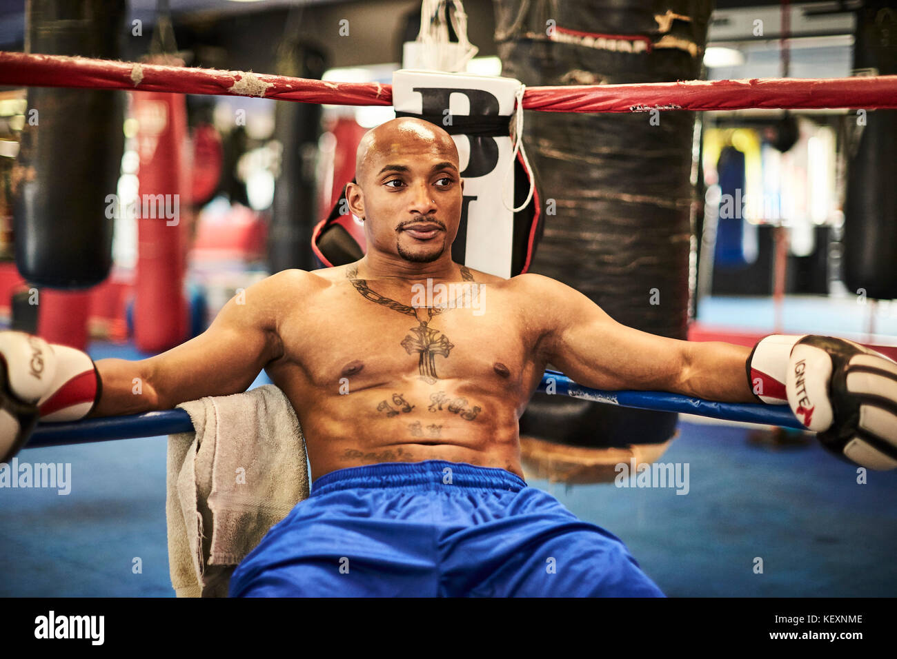 Male boxer resting in boxing ring corner, Taunton, Massachusetts, USA - Stock Image