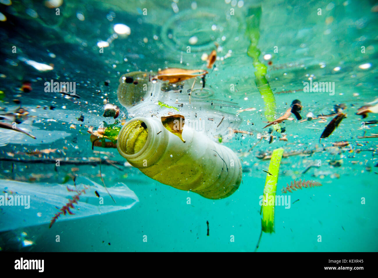 Trash floating on the Marseille shore line, Bouches-du-Rhône, France. Water pollution is largely caused by - Stock Image