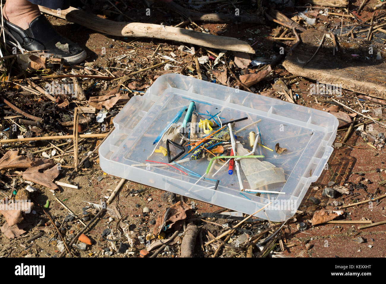 Selection of small plastic waste inc straws and microplastics. Plastic pollution in our rivers and seas is being - Stock Image
