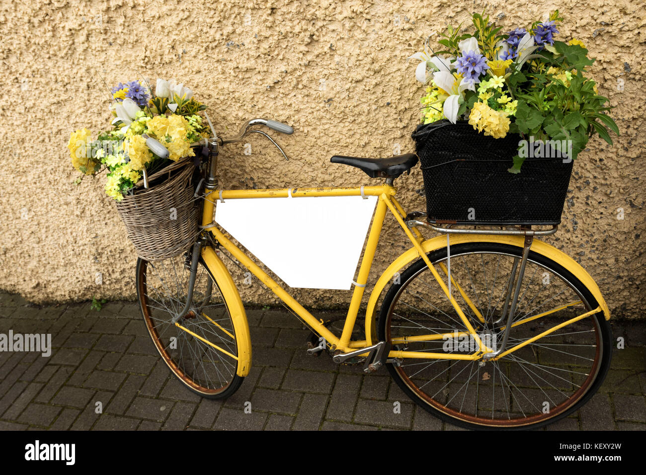Yellow bicycle with baskets of flowers against yellow wall as advertising vehicle with plain area for additional - Stock Image