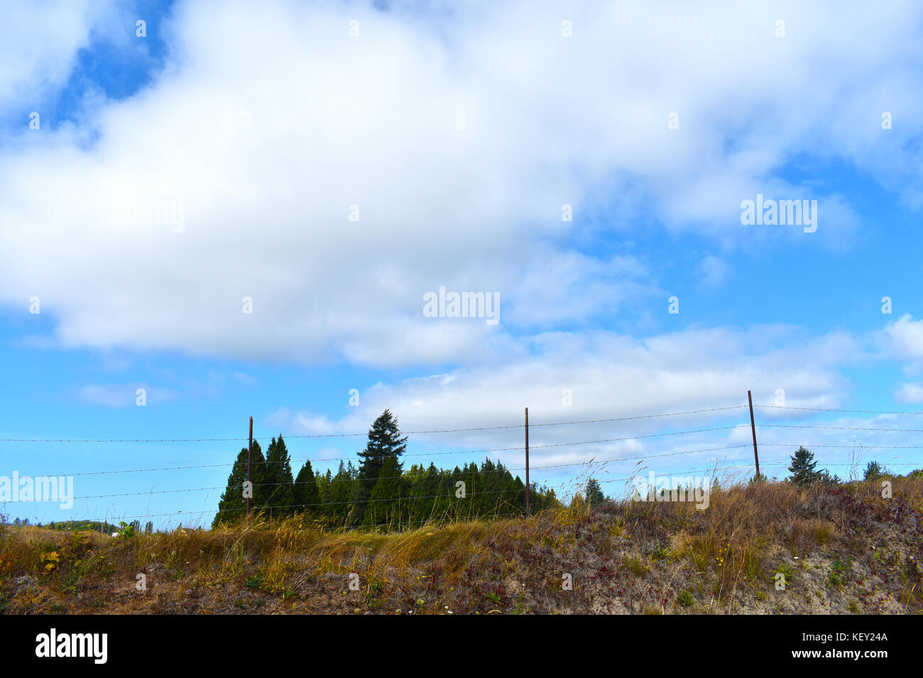 Barb wired fence on a hill with evergreen trees in the background under a cloudy blue sky. Drought, water shortage, - Stock Image