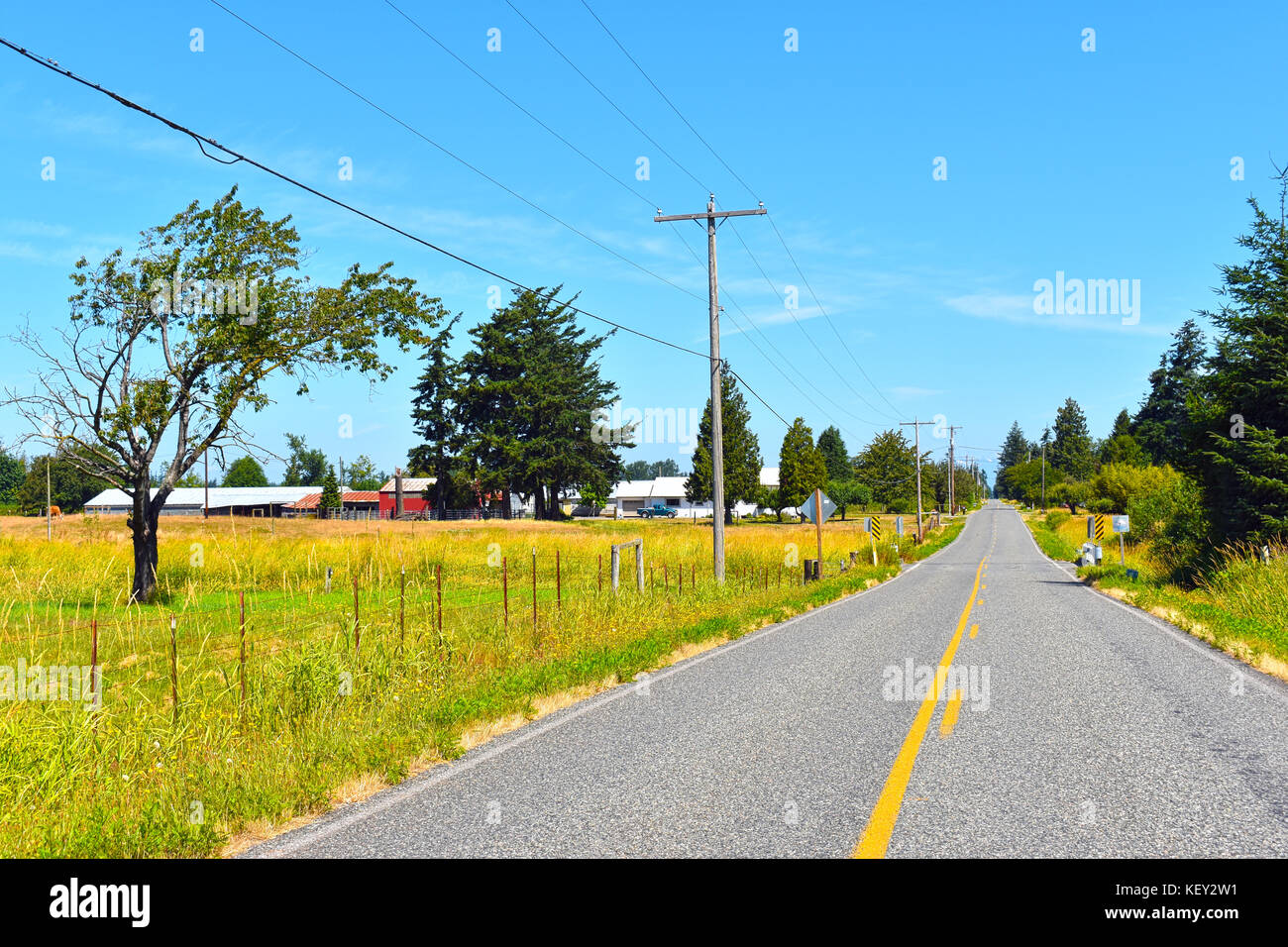 A long road in the country on a beautiful sunny day with a farm on the left side of the road.  There are old telephone - Stock Image