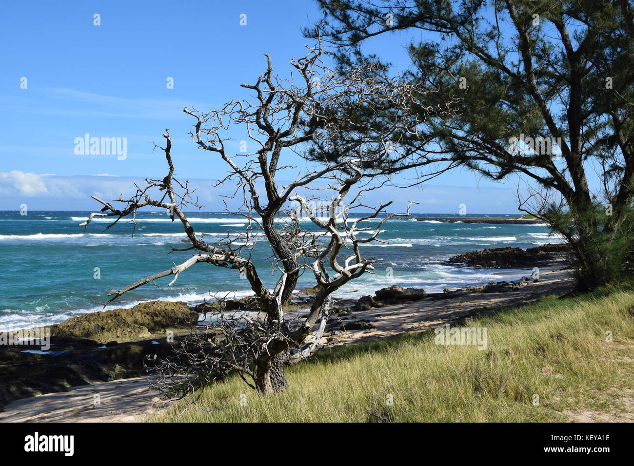 Hiking the Kahuku shoreline on the Oahu's North Shore is a beautiful way to discover Hawaii - Stock Image