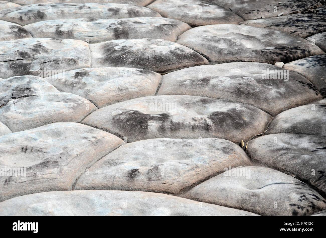 Natural hexagonal erosion pattern in sandstone rock formation, Royal National Park, NSW, Australia Stock Photo