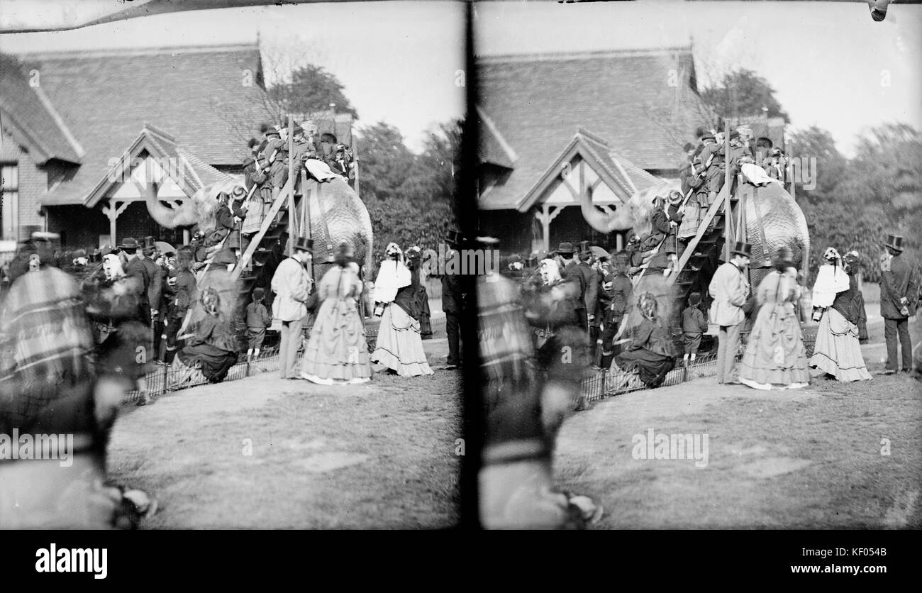 Zoological Gardens, Regents Park, London. Stereoscopic view showing members of the public mounting an elephant for - Stock Image