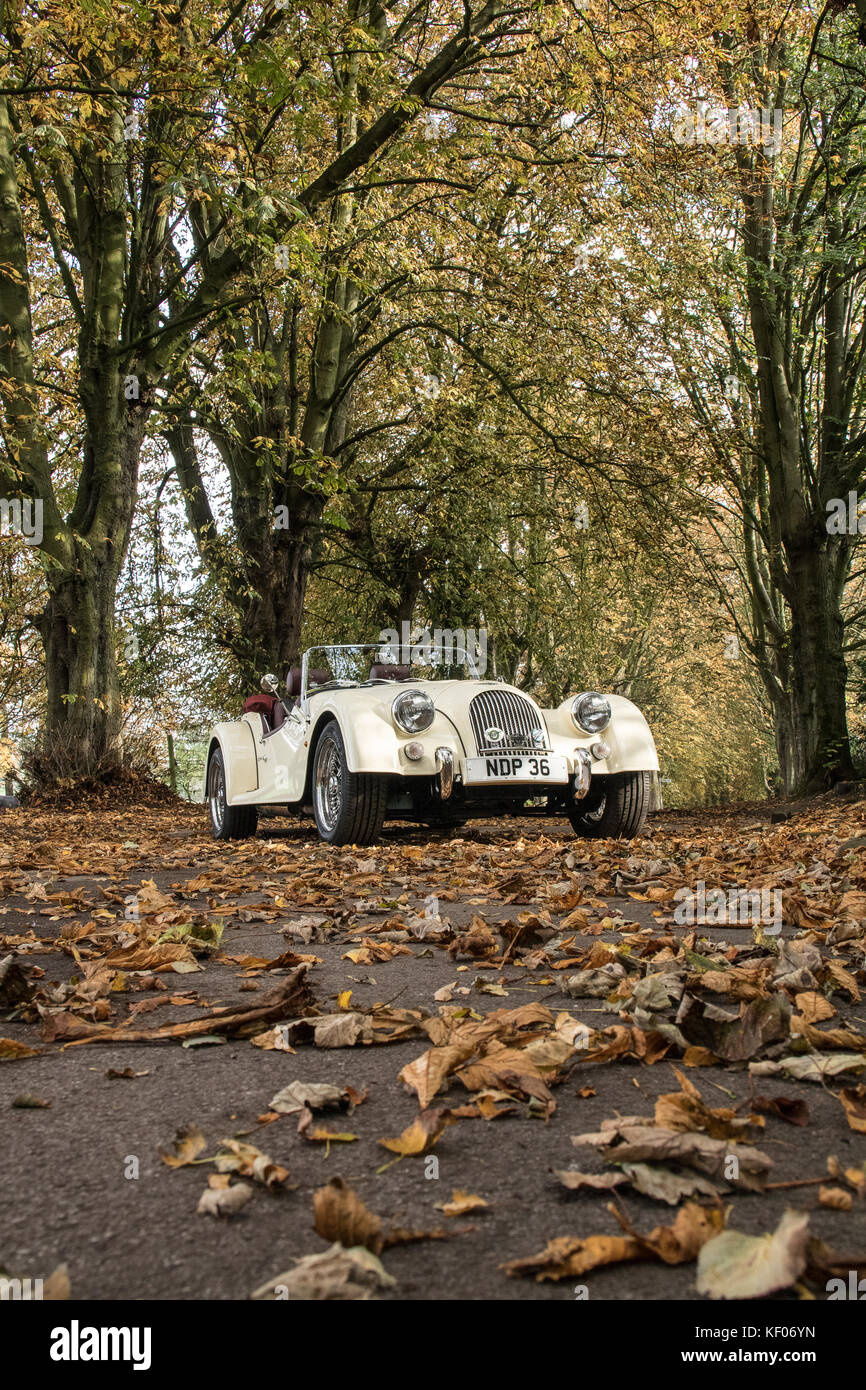 A cream Morgan Sports Car photographed in the Autumn, in Cragg Wood, Rawdon, Yorkshire Stock Photo