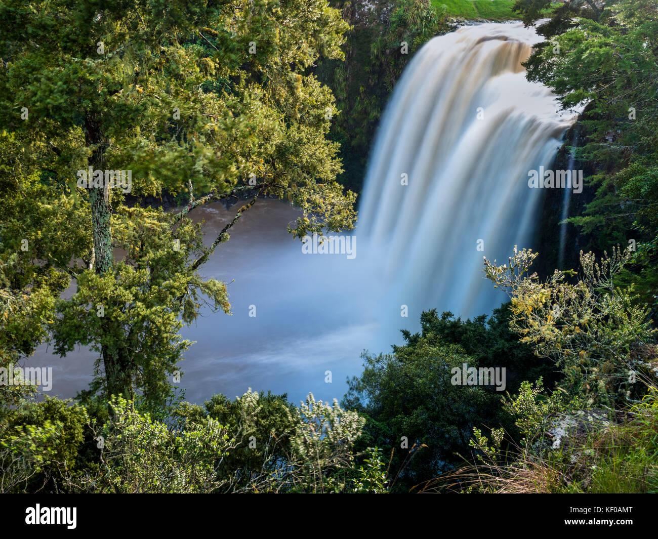 New Zealand, North Island, Whangarei Falls - Stock Image