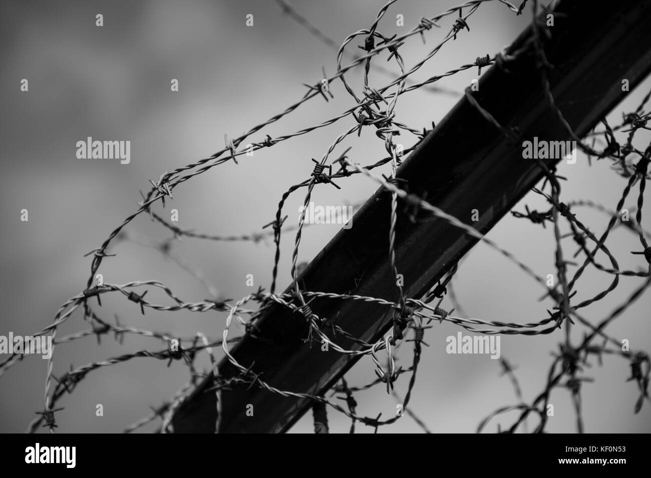 A black and white picture of a fence with barb wire - Stock Image