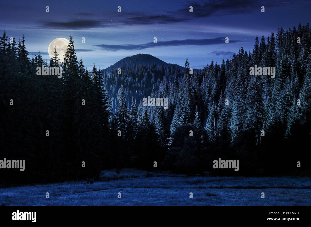 Beautiful Nature Scenery In Mountains With Spruce Forest At Night In Stock Photo Alamy