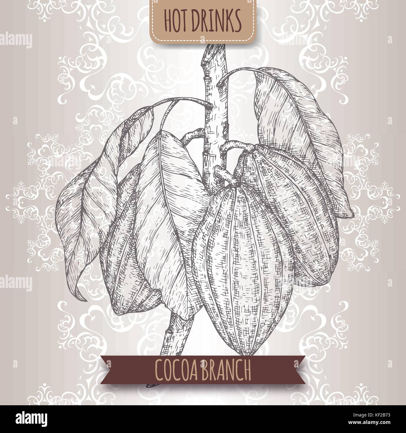 Cocoa tree aka Theobroma cacao branch sketch with leaves and beans. Hot drinks collection. - Stock Vector