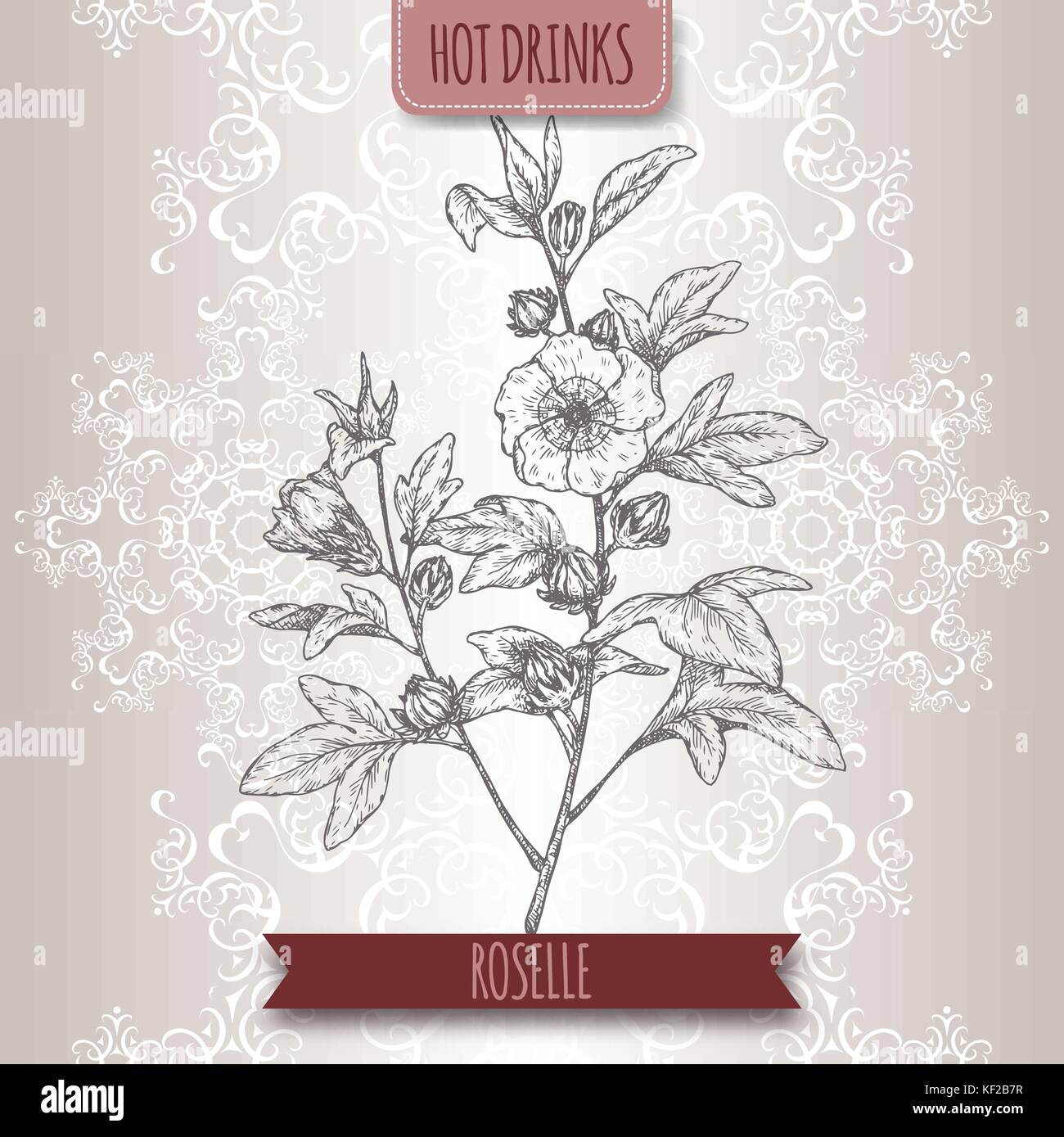 Hibiscus flowers used for tea stock photos hibiscus flowers used roselle aka hibiscus sabdariffa with leaves and flowers used to make carcade tea izmirmasajfo