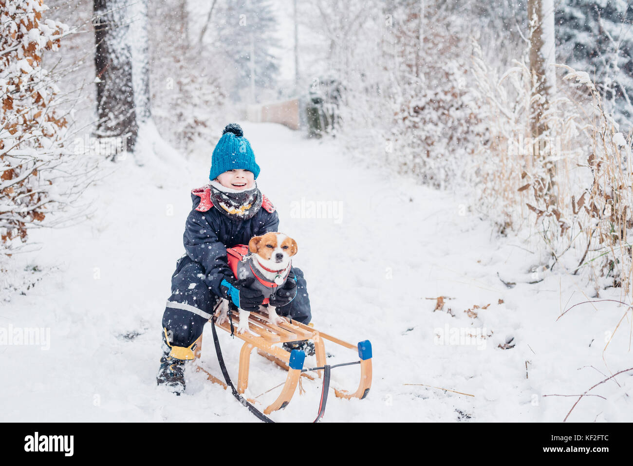 Little boy with his dog on a sledge in snow - Stock Image