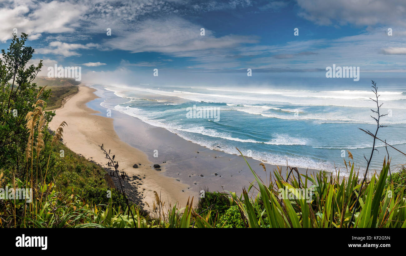 New Zealand, North Island, view to Maunganui Bluff Beach - Stock Image