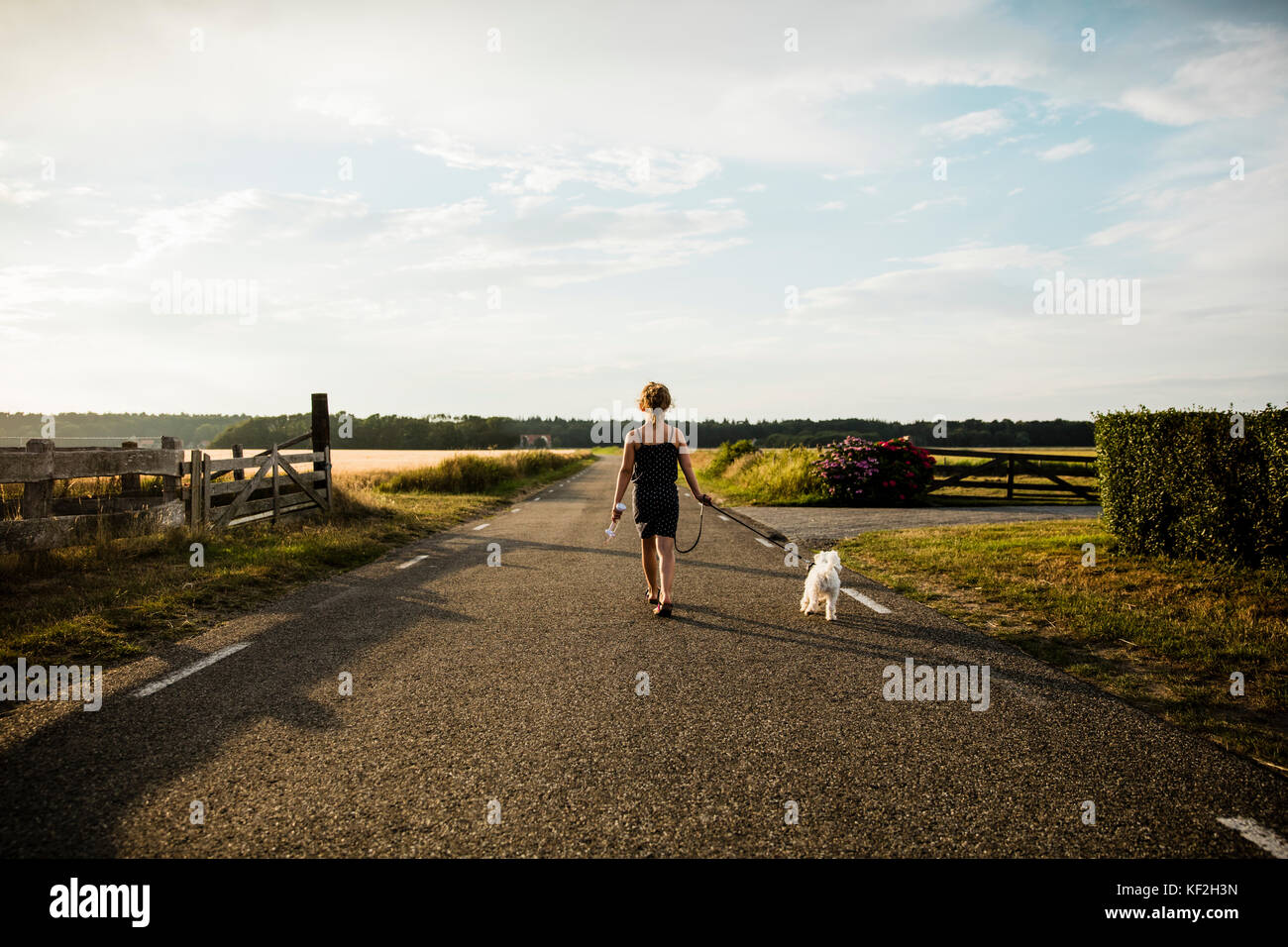 Girl walking with dog on rural road holding miniature wind turbine - Stock Image