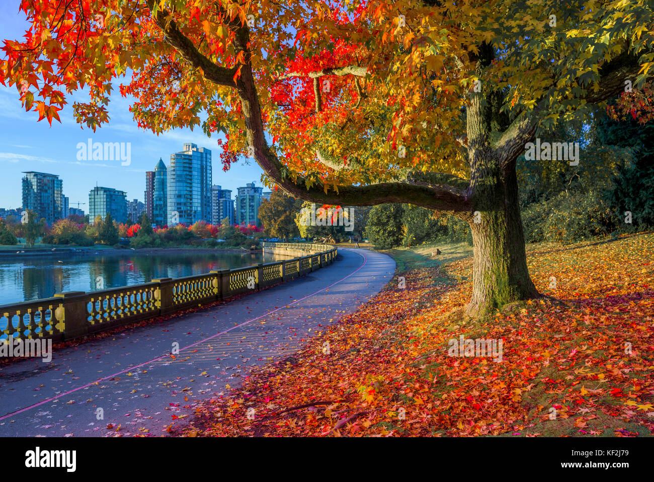 Vancouver Seawall Stanley Park Stock Photos & Vancouver