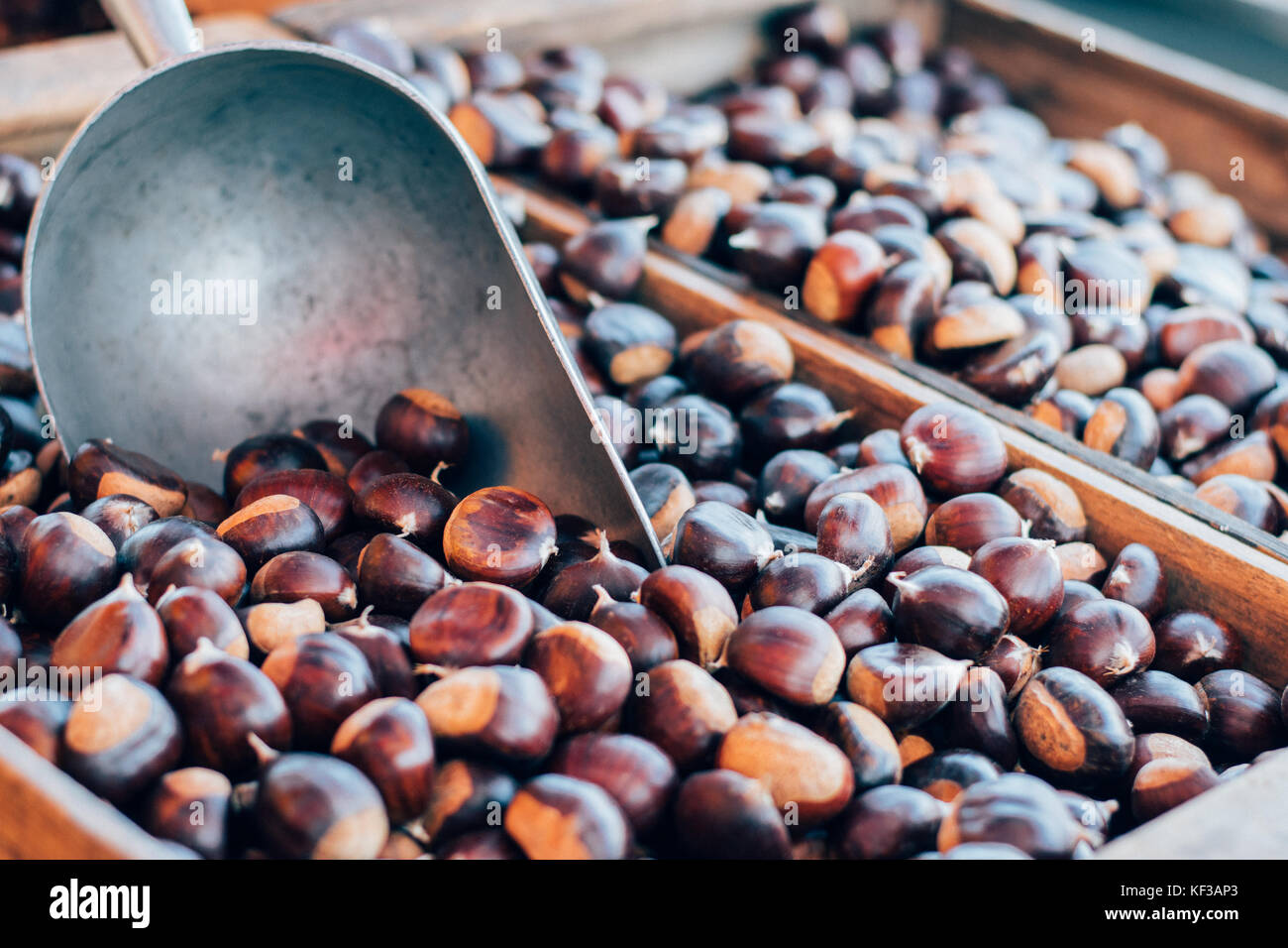 Organic local Farmer's Market Chestnuts ready for roasting in a wooden box with a scoop or on an open flame - Stock Image