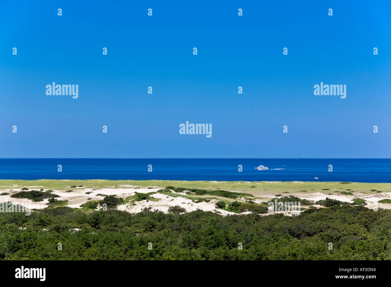 Province Lands at Cape Cod National Seashore. Sand dune vegetation in the foreground & the Atlantic Ocean in - Stock Image