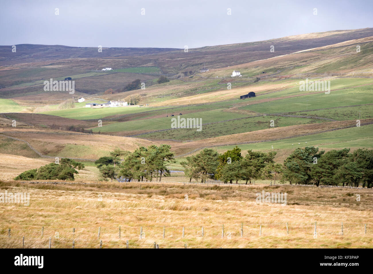 Remote farming communities in Upper Teesdale, County Durham, England, UK - Stock Image