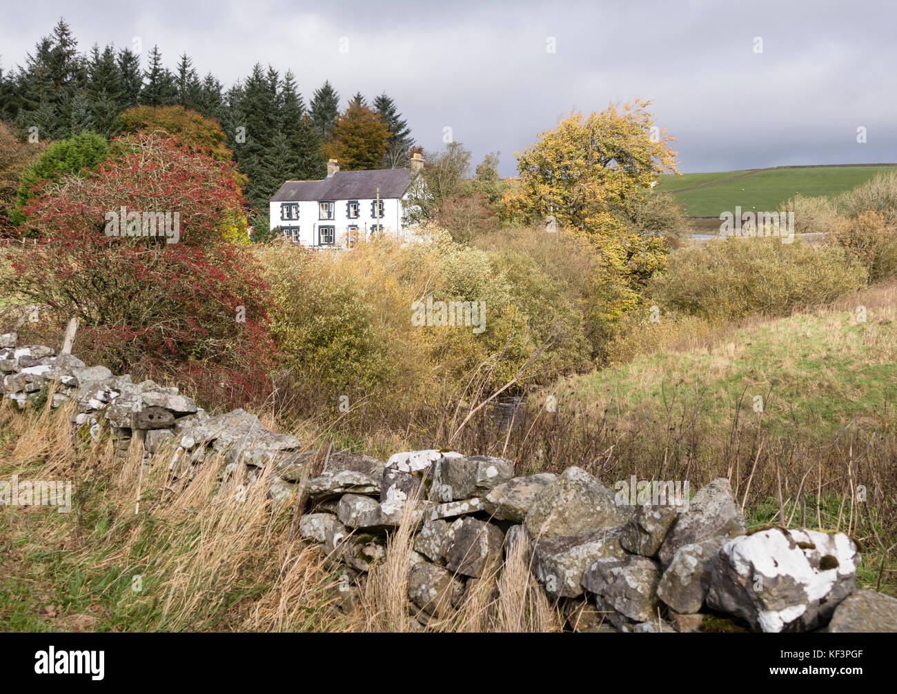 Autumn at Langdon Beck Hotel, Foerest in Teesdale, Upper Teesdale, County Durham, England, UK - Stock Image