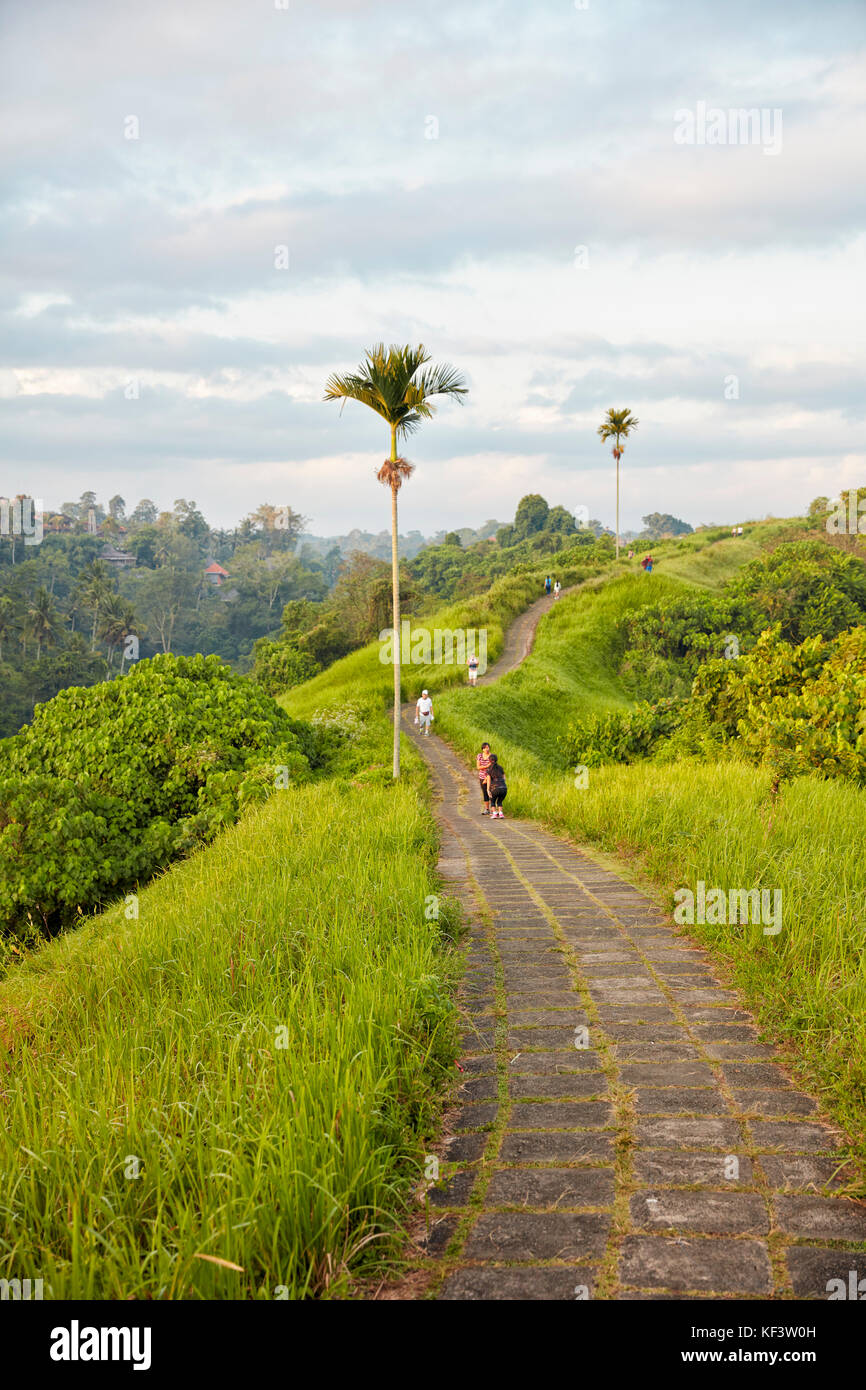 Campuhan Ridge Walk. Ubud, Bali, Indonesia. - Stock Image
