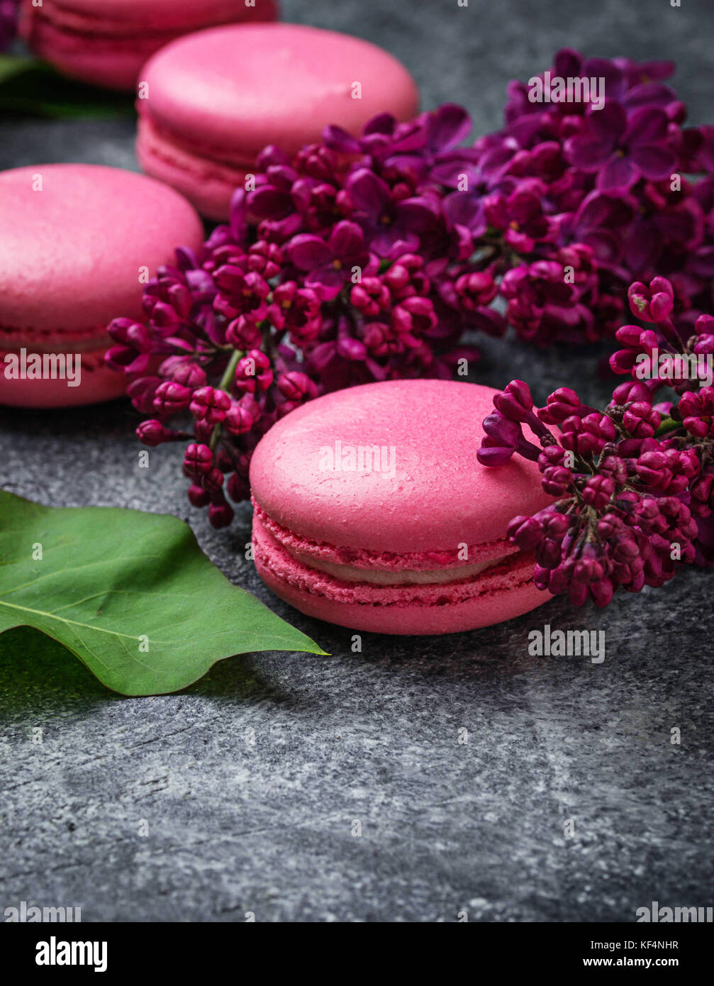 Pink macaroons and lilac.  - Stock Image