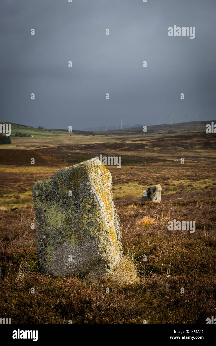 Achnagarron Standing Stones near Rogart, Sutherland, Scottish Highlands, UK Stock Photo