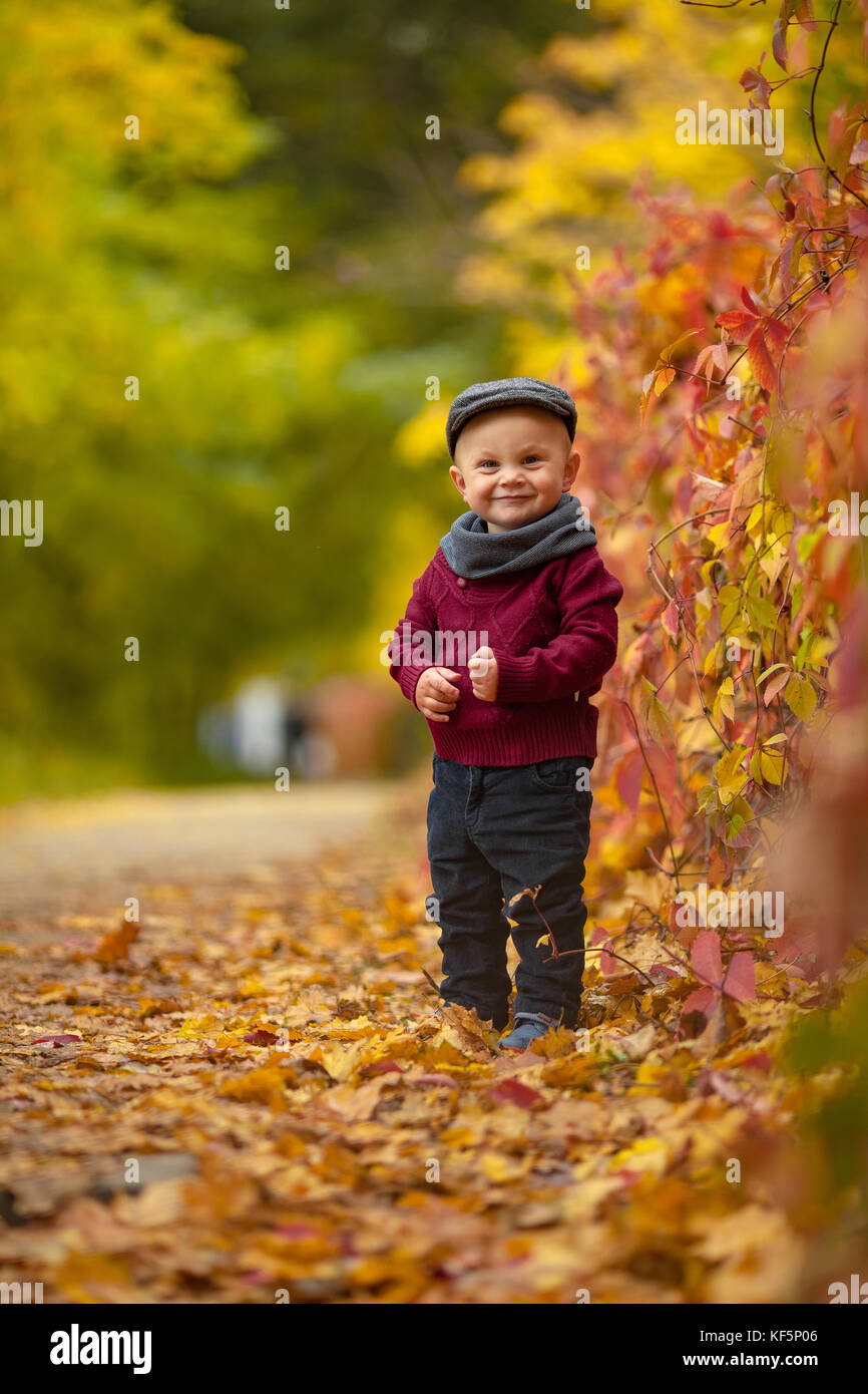 Little happy child boy wearing hat, scarf and sweater goes in park on background of colorful autumn leaves. - Stock Image