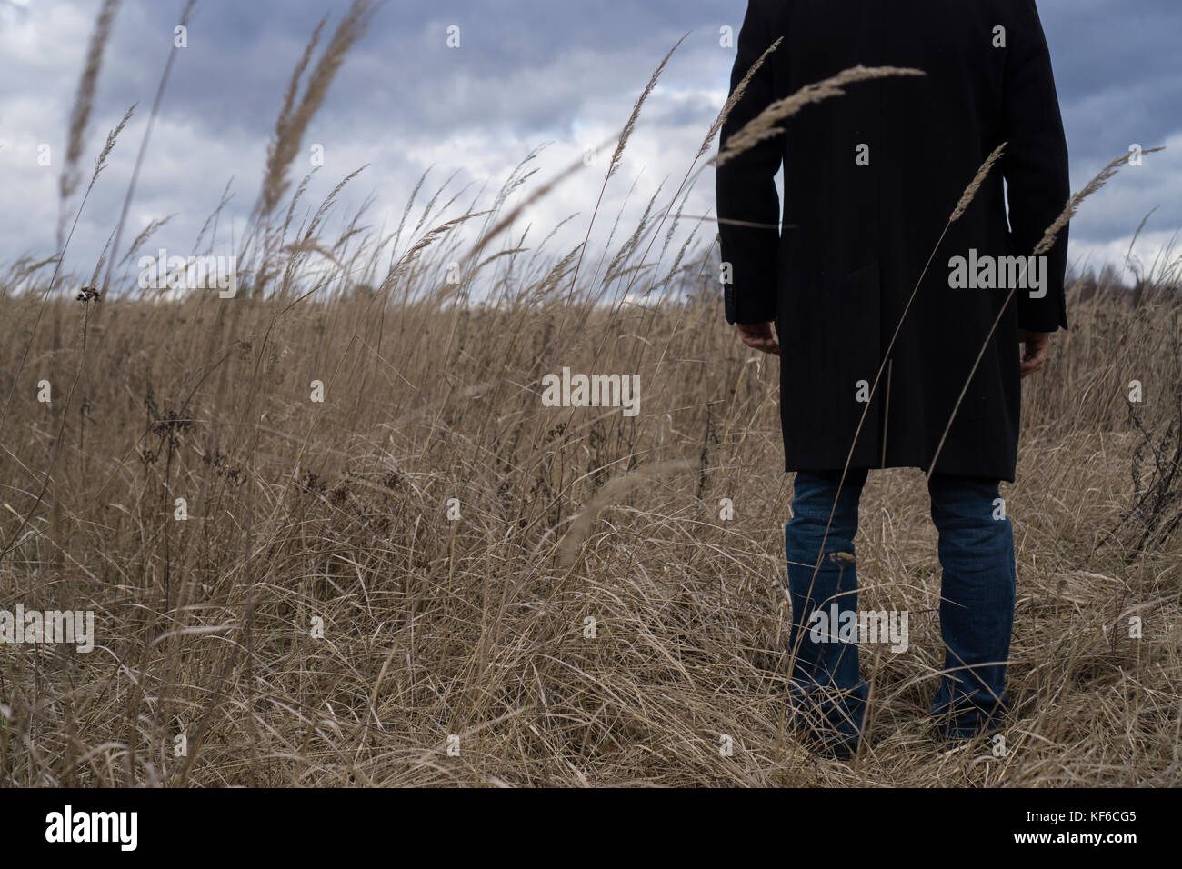 Back close up of a man wearing a coat standing in a field - Stock Image