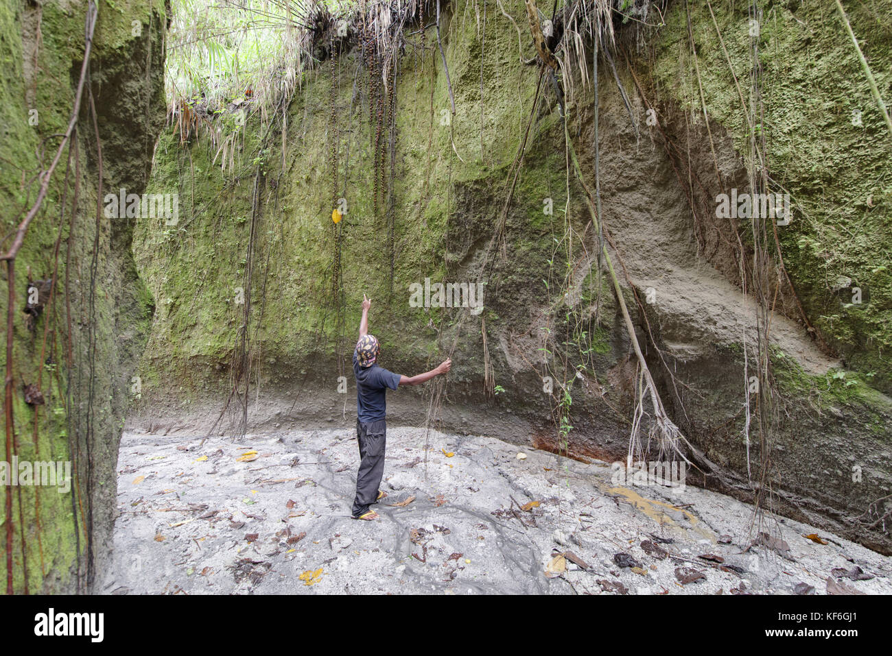 Filipinos pont to tree root in Pinatubo mountains, Capas - Stock Image