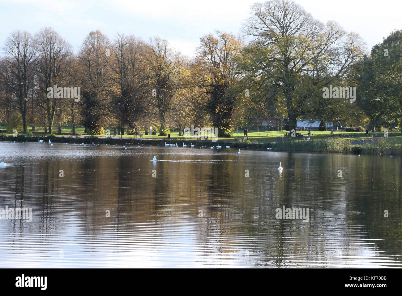 Lurgan, Northern Ireland, UK. 26 October 2017. High pressure at this time of year means sunny days, calm conditions Stock Photo