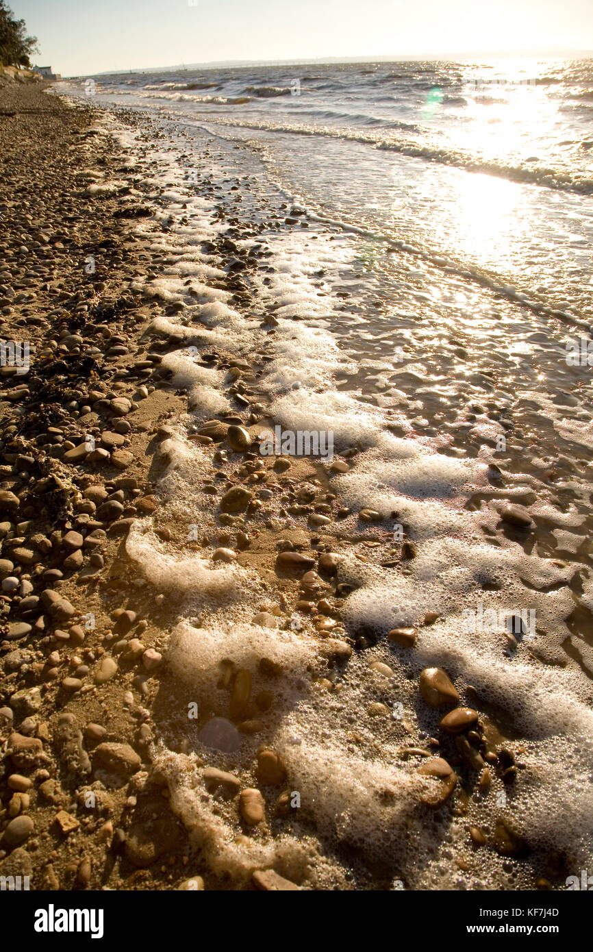 Foam on the river bank revealing that the water has a high content of dissolved organic matter. This can be derived - Stock Image