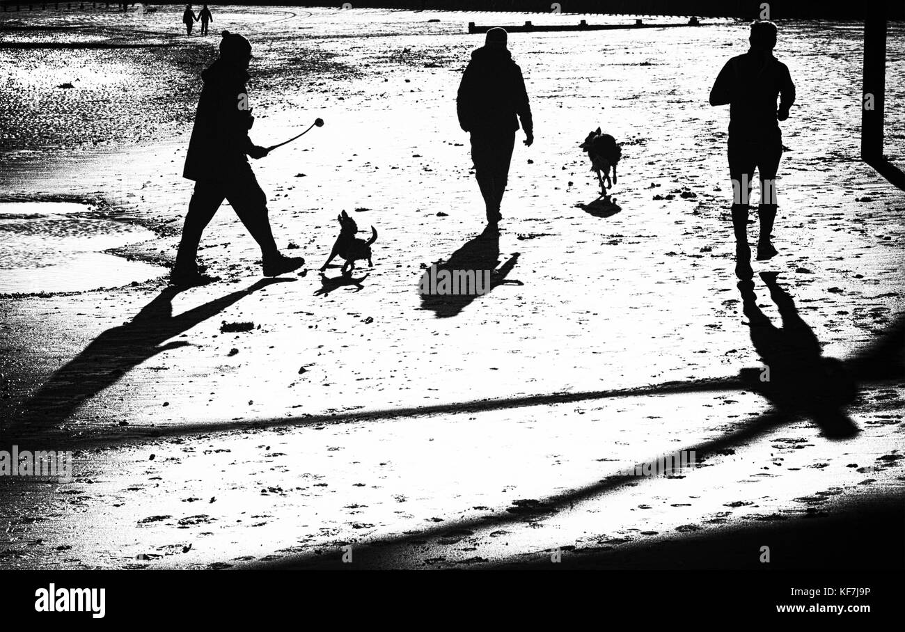 Graphic image of people and pet dogs enjoying the beach on a winter's morning in Cleethorpes - Stock Image